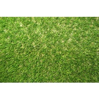 Artifical Turf - Native 35Mm X 2M Width